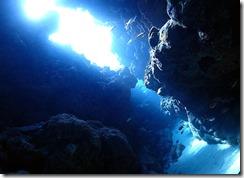 okinawa kerama diving742