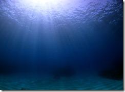 okinawa kerama diving775
