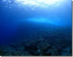 okinawa kerama diving785