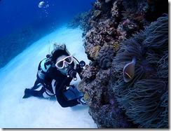 okinawa kerama diving789