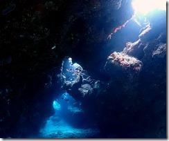 okinawa kerama diving800
