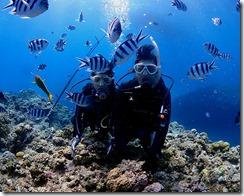okinawa kerama diving803