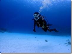 okinawa kerama diving832