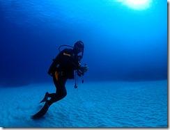 okinawa kerama diving837