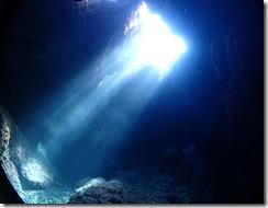okinawa kerama diving862