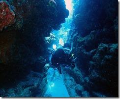okinawa kerama diving887