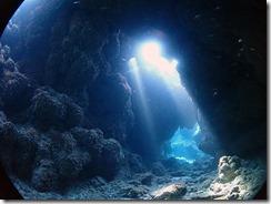 okinawa kerama diving889