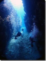 okinawa kerama diving890