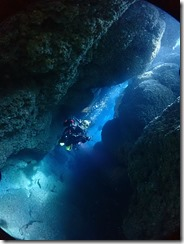 okinawa kerama diving891