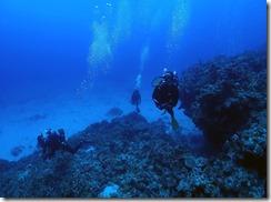 okinawa kerama diving910