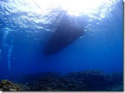okinawa kerama diving971
