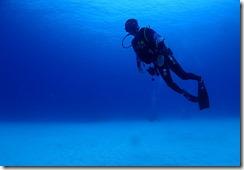 okinawa kerama diving994