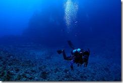 okinawa kerama diving995