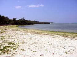 沖縄 ビーチポイント