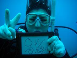 沖縄 ダイビング PADIオープンウォーター講習